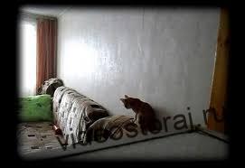 Как поставить скрытую камеру в квартире