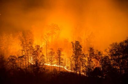 Виды пожаров