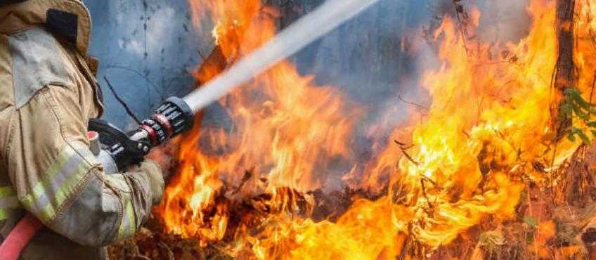 Пожар в природных условиях