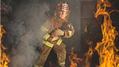 Показатель опасных факторов пожара
