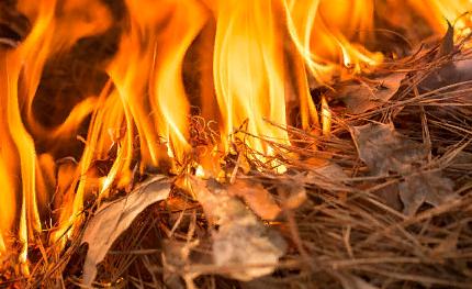 Первая стадия пожара