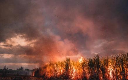 Какие бывают пожары