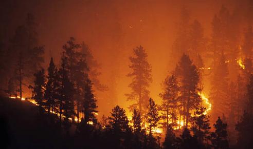 Уменьшение количества кислорода при возгорании